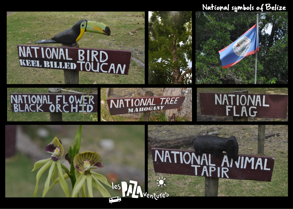 4 national symbols of belize